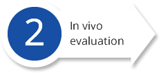 In-vivo-evaluation